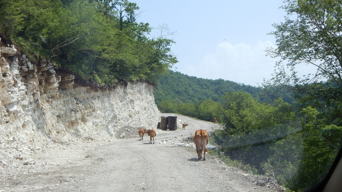 gruzia_travel_51